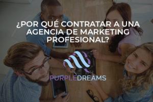 infografia purple dreams